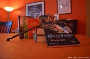 Une petite partie de ma collection d'objets reliés à Harry Potter. J'aime chacun de ces livres d'amour.