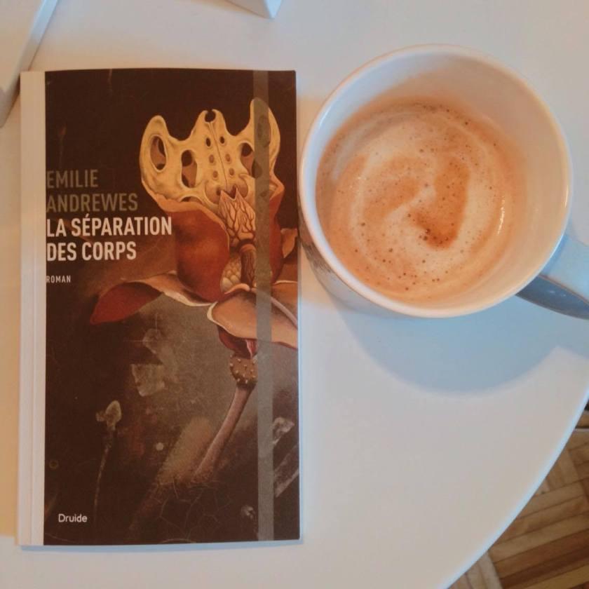 la disparition des corps, Emilie Andrewes, roman québécois, littérature québécoise, le fil rouge, lefilrougelit, le fil rouge lit, les livres qui font du bien, édition druide, bibliothérapie, roman d'amour, différence d'âge,