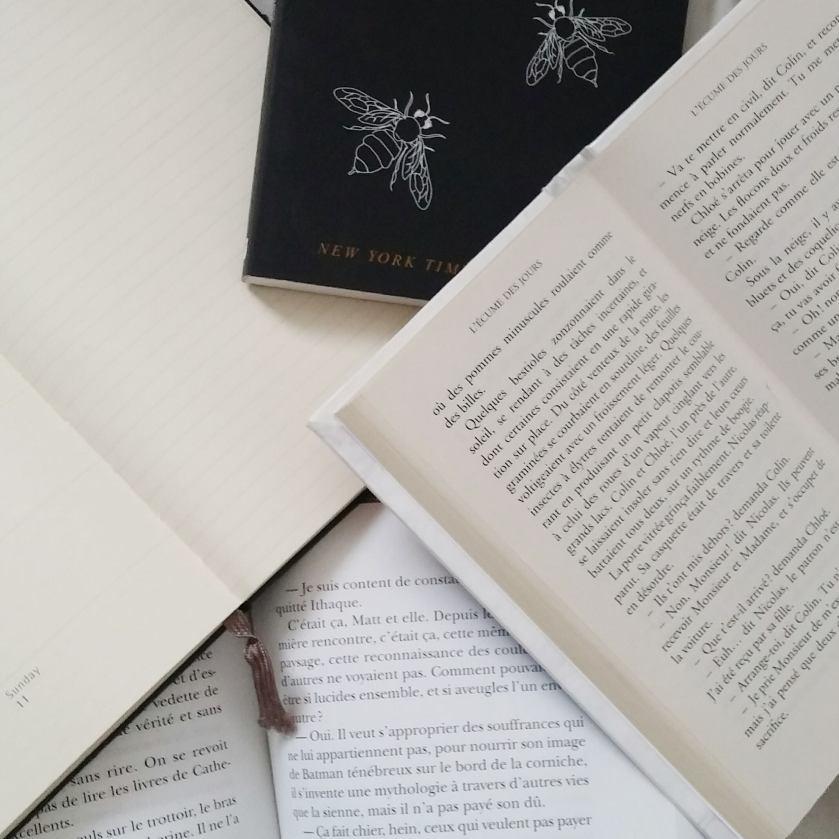coup de coeur, jane eyre, page turner, littérature, livres, lecture, études, étudiants, cégep, prendre le temps, apprécier, charlotte bronte, livre, réflexion, réflexion littéraire
