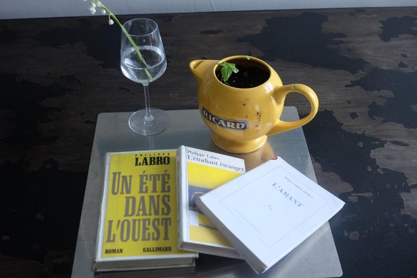 Roman jeunesse, les livres qui font du bien, le fil rouge lit, Philippe Labro, Marguerite Duras. L'Amant, lecture, littérature étrangère, Un été dans l'ouest, L'étudiant étranger