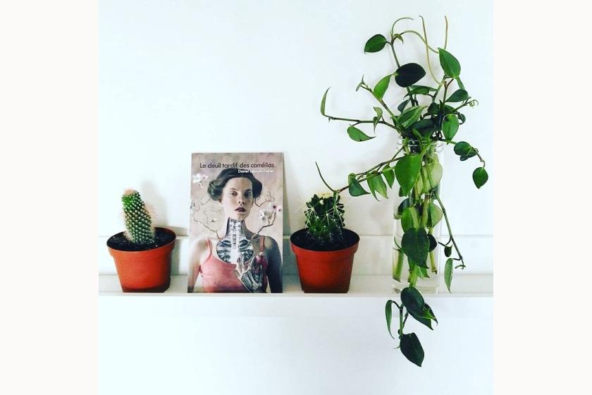 le deuil tardif des camélias, Daniel Leblanc-Poirier, Éditions de l'Interligne, le fil rouge lit, blogue littéraire, coffret littéraire, les livres qui font du bien, bibliothérapie, littérature