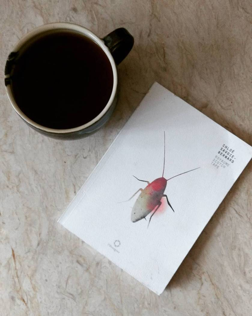 Le fil rouge le fil rouge lit bibliothérapie les livres qui font du bien Royaume Scotch-Tape Chloé Savoie-Bernard Hexagone poésie femme féminisme littérature québécoise