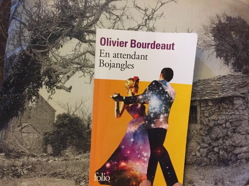 #lefilrougelit, amour, bibliothérapie, folie, En attendant Bojangles, Nina Simone, Olivier Bourdeaut
