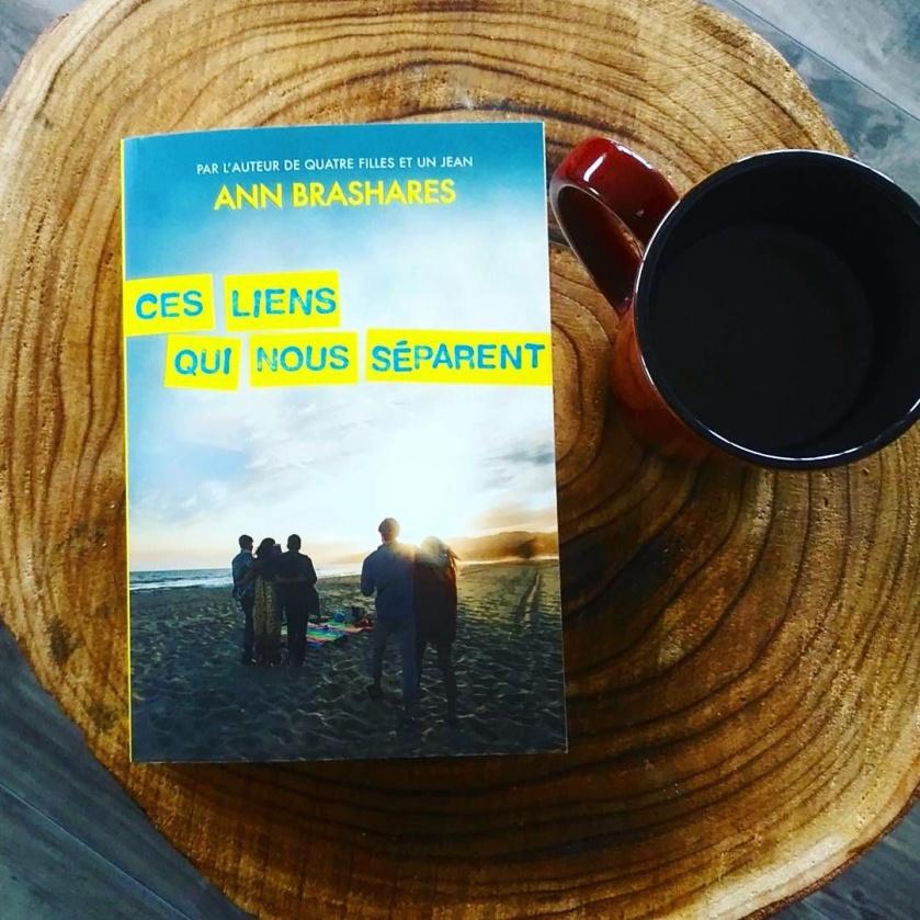 Ces liens qui nous séparent, Ann Brashares, auteure de quatre filles et un jean, littérature jeunesse, famille, famille recomposée, secrets de famille, drame, amour, blog, blogue, blogue littéraire, coffrets littéraires, les livres qui font du bien, le fil rouge, chez le fil rouge, le fil rouge lit
