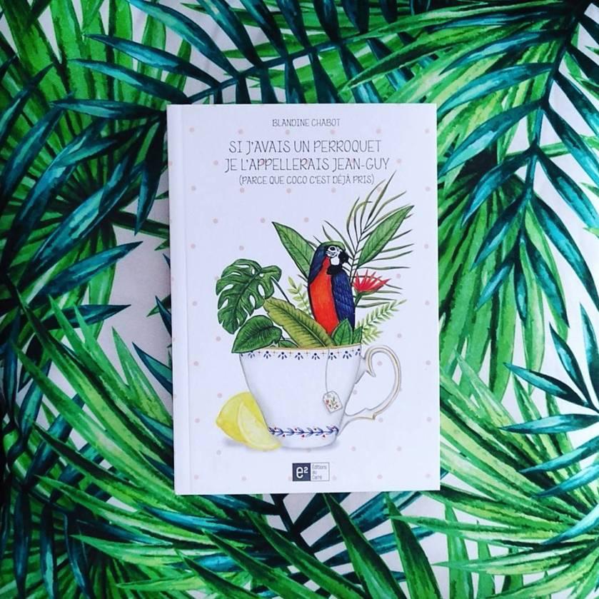 Si j'avais un perroquet, je l'appelerais Jean-Guy (parce que Coco c'est déjà pris), Blandine Chabot, éditions au carré, littérature québécoise, humour, amour, amitié, trahison, le fil rouge, le fil rouge lit, blogue, blog, blogue littéraire, les livres qui font du bien, bibliothécaire