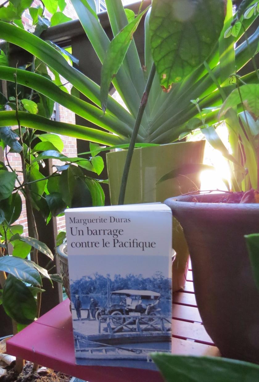 Le fil rouge; Le fil rouge lit; Bibliothérapie; Littérature; Lecture; Livres; Les livres qui font du bien; Marguerite Duras; Un barrage contre le Pacifique; Auto-fiction, Canicule; Lecture d'été