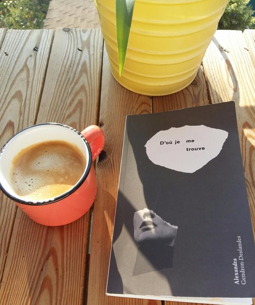 #lefilrouge #lefilrougelit #leslivresquifontdubien #bibliothérapie #lecture #livres #littérature #littératurequébécoise #AlexandraGendronDeslandes #doùjemetrouve #cheveux #raser #cancer #pertedecheveux #témoignages #documentaire #femmes