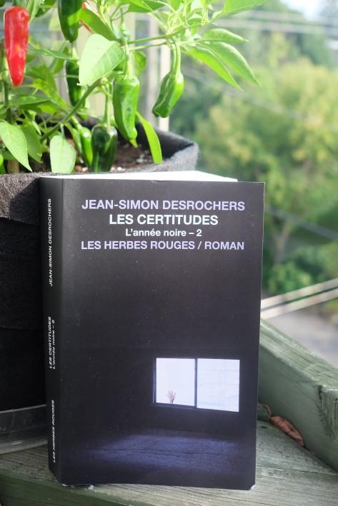 Le fil rouge le fil rouge lit bibliothérapie littérature lecture livres les livres qui font du bien Jean-Simon Desrochers L'année noire Les Herbes rouges