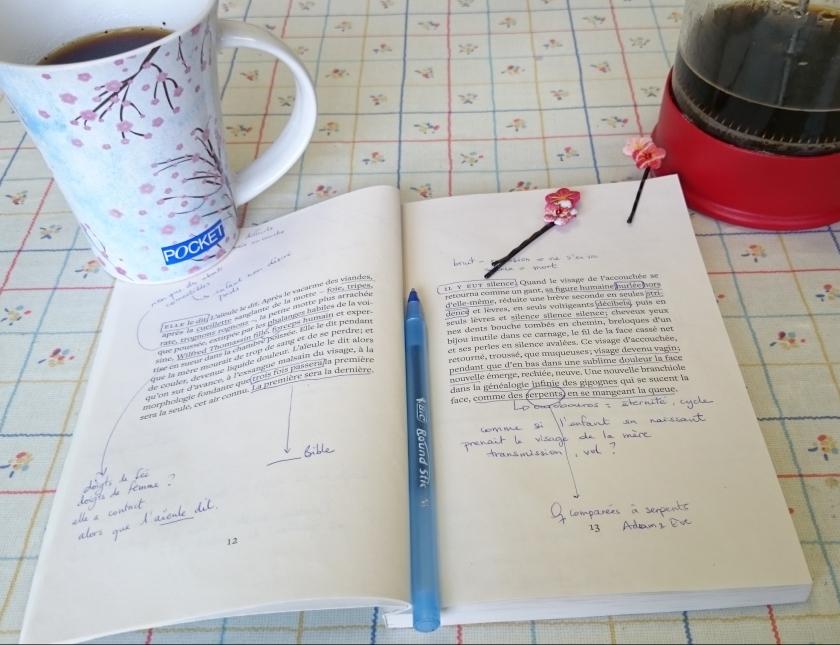 le fil rouge, le fil rouge lit, littérature, lecture, livres, les livres qui font du bien, bibliothérapie, Catherine Lalonde, la dévoration des fées, le Quartanier, poésie québécoise