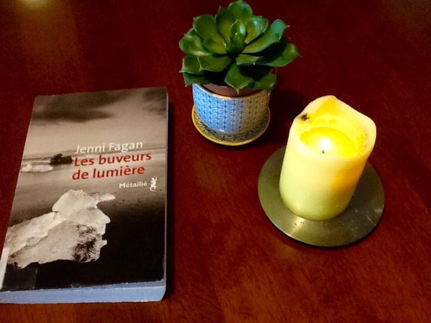#lefilrouge #lefilrougelit #bibliothérapie #littérature #lecture #livres #leslivresquifontdubien #Lesbuveursdelumière #JenniFagan #Métailié #dystopie #hiver #èreglaciaire #roman #Écosse