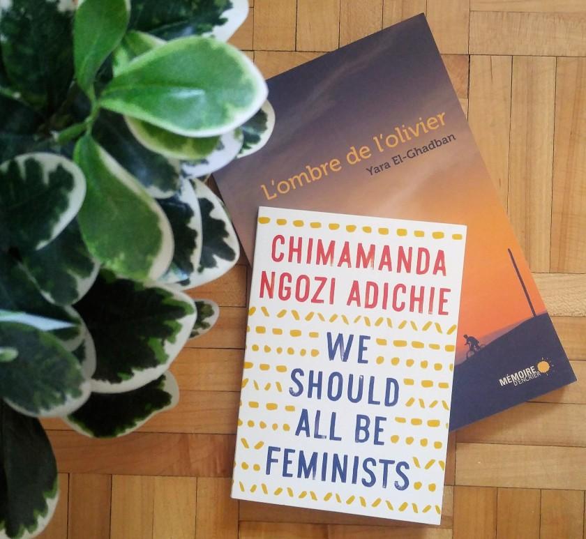 Les livres qui font du bien, Le fil rouge lit, lefilrougelit, littérature, littérature étrangère, lecture, suggestions, 8 mars, femmes, féminisme, racisme, diversité, bibliothérapie