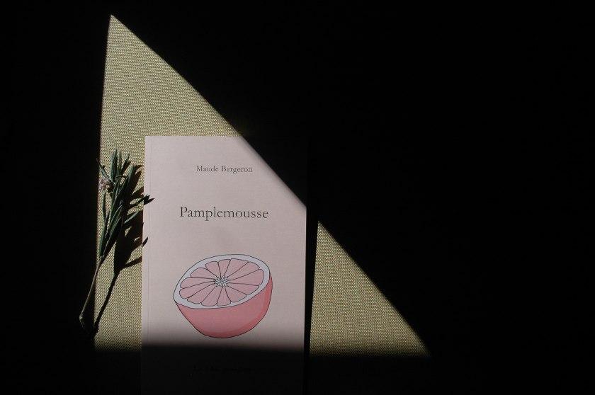 pamplemousse, relation amoureuse, littérature québécoise, féminisme, Maude Bergeron, Les folies passagères, livre auto-publié, livre illustré, lecture, livres, littérature, les livres qui font du bien, bibliothérapie, le fil rouge, le fil rouge lit,