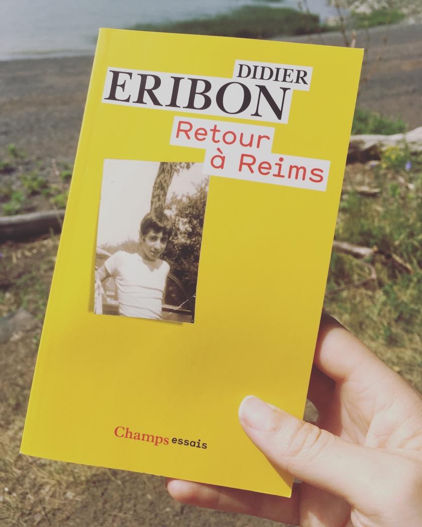 Didier Eribon, REtour à REims, Annie Ernaux, Elena Ferrante, Classes sociales, sociologie, littérature, bibliothérapie