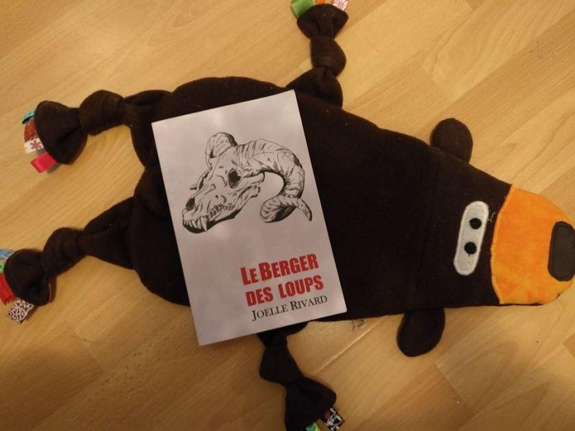 Le Berger des loups, Joelle Rivard, autofinancement, littérature québécoise, littérature fantastique
