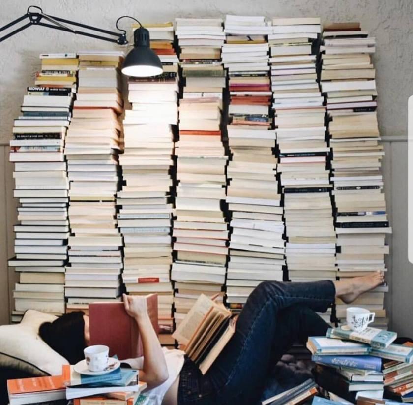 le fil rouge, le fil rouge lit, bibliothérapie, littérature, lecture, université, pression, compétition, lire, école, bacc, futur, carrière, étudier en littérature, les livres qui font du bien