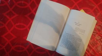 le fil rouge, le fil rouge lit, bibliothérapie, les livres qui font du bien, littérature, livre surprise, livres, Guillaume Musso, La fille de Brooklyn,