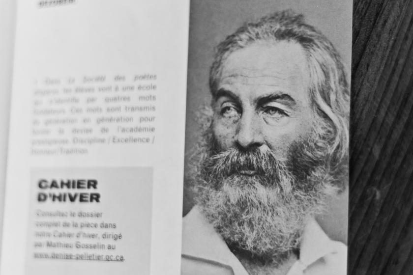 Poésie, Walt Whitman, Journée internationale de la poésie, Feuilles d'herbe, Recueil, Littérature américaine, Le Fil rouge, Le Fil rouge lit