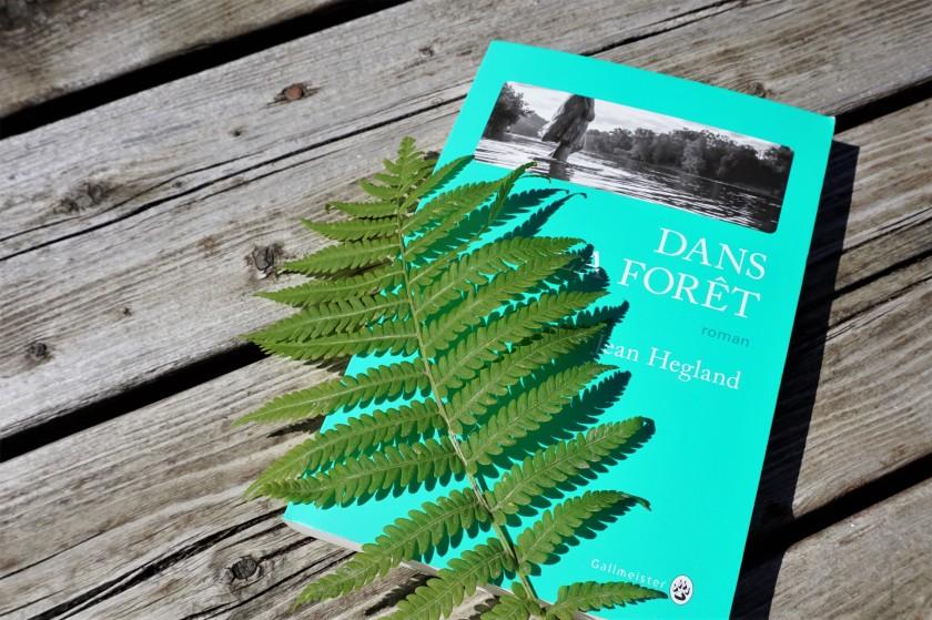 Dans la forêt Jean Hegland Gallmeister livre lecture roman post-apocalypse survivalisme Le fil rouge littérature américaine nature