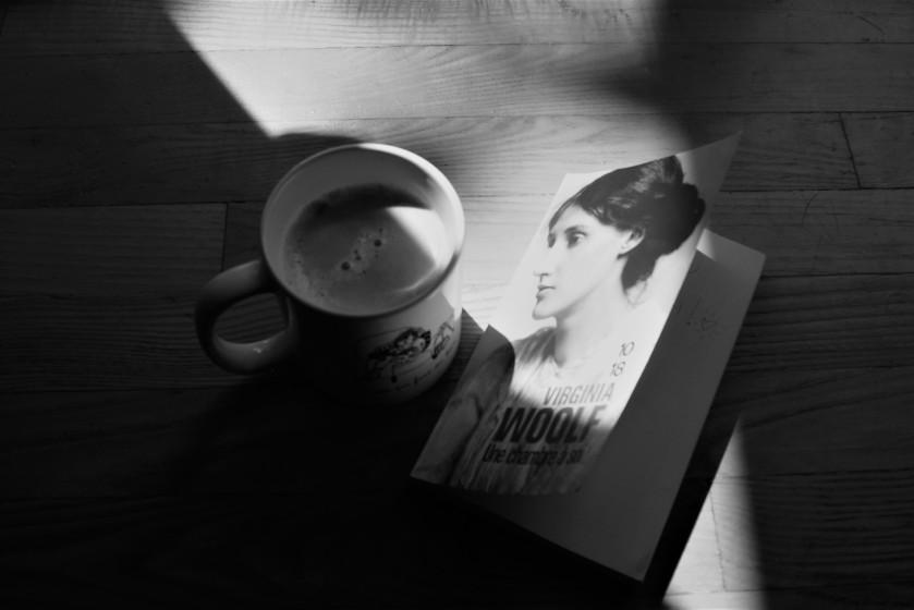 #lefilrouge #lefilrougelit #bibliothérapie #leslivresquifontdubien #littérature #livres #lecture féminisme essai féminisme Virginia Woolf une chambre à soi réflexion féministe femme roman essai Histoire des femmes