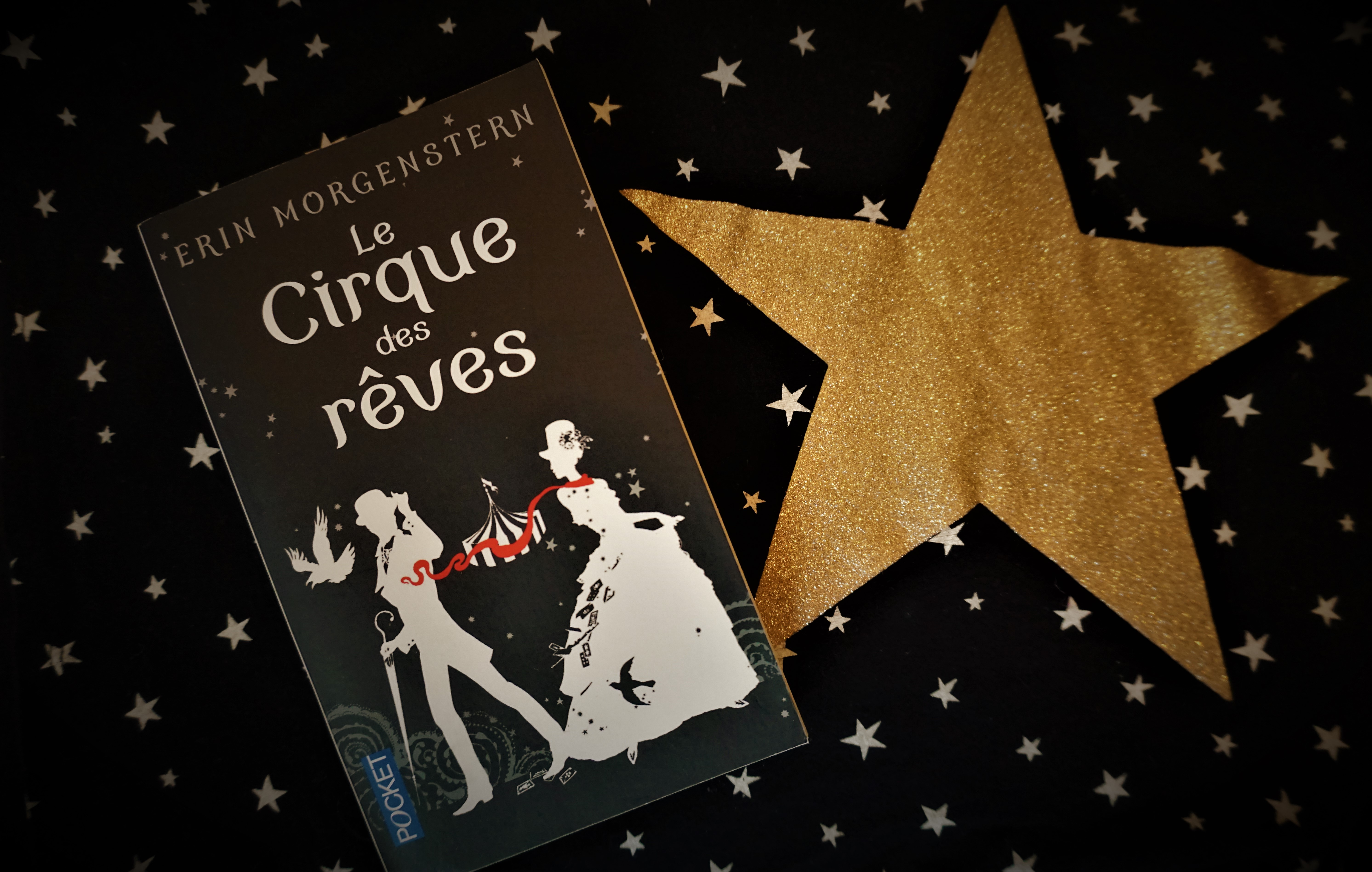 Le cirque des rêves Erin Morgenstern Pocket roman romance amour cirque fantastique magie Le fil rouge réflexions littéraire livre lecture