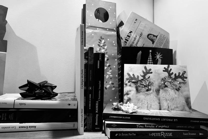 le fil rouge, le fil rouge lit, bibliothérapie, littérature, lecture, livres, les livres qui font du bien, suggestions de lecture, idées cadeau, heather o'neil, hubert reeves, livres pour enfants, contes culottés, bandes-dessinées, paul à la maison, michel rabagliati, nouvelles, littérature québécoise, stalkeuses, folles frues fortes, livres de cuisine, karoline georges, louisa may alcott, sylvain prudhomme, sortir de sa zone de confort