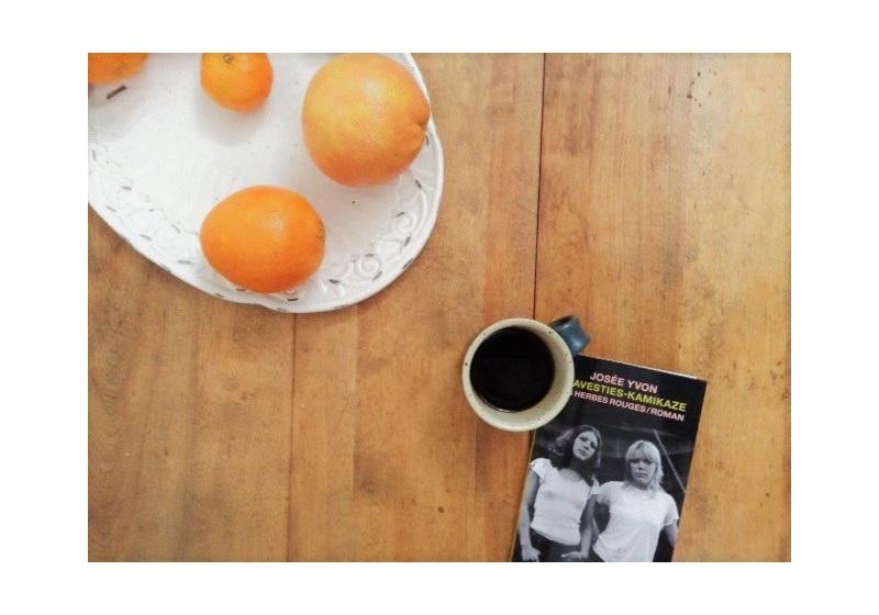 le fil rouge, le fil rouge lit, littérature, livres, les livres qui font du bien, bibliothérapie, les Herbes rouges, Travesties-Kamikaze, Josée Yvon, littérature québécoise, livre sur les transgenres, recueil de poésie québécois, littérature de la marginalité
